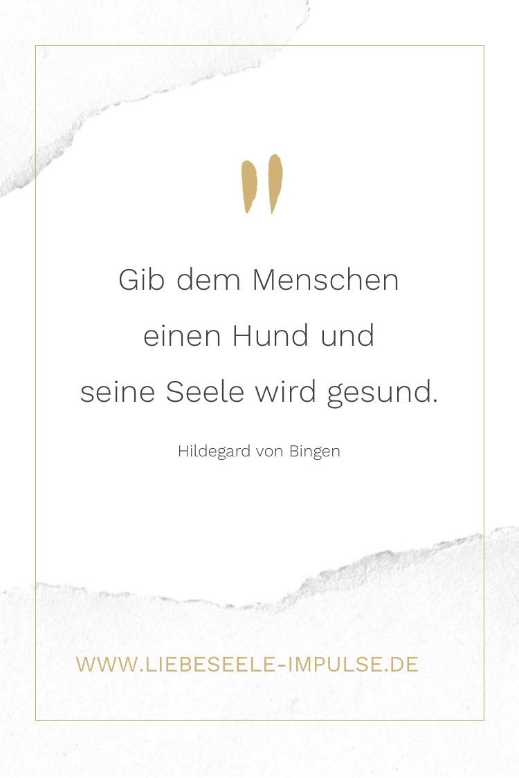 """Überforderung Zitat von Julia Engelmann """"Mein bester Versuch..."""""""
