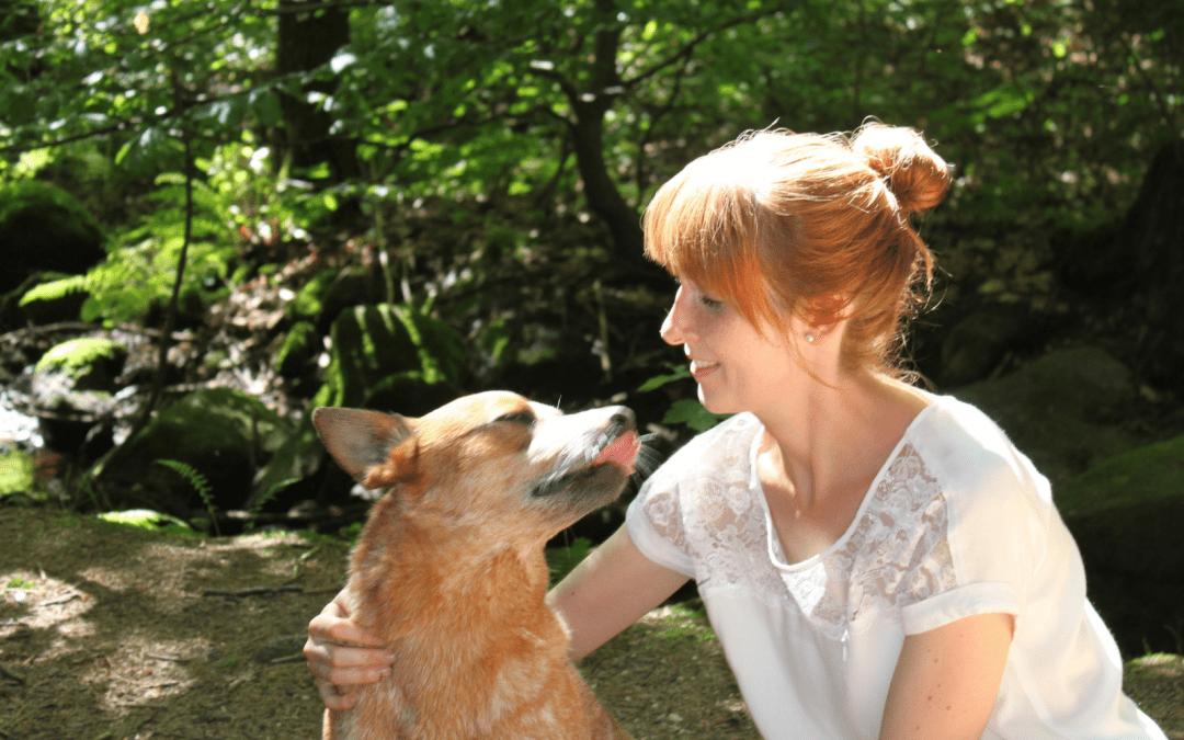 Was ich von meinem Hund über die Selbstständigkeit gelernt habe